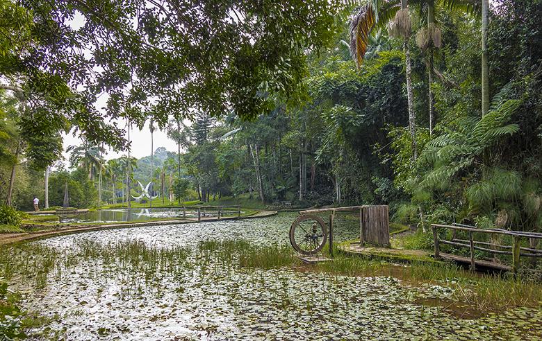 Jardim Botânico de São Paulo - preço