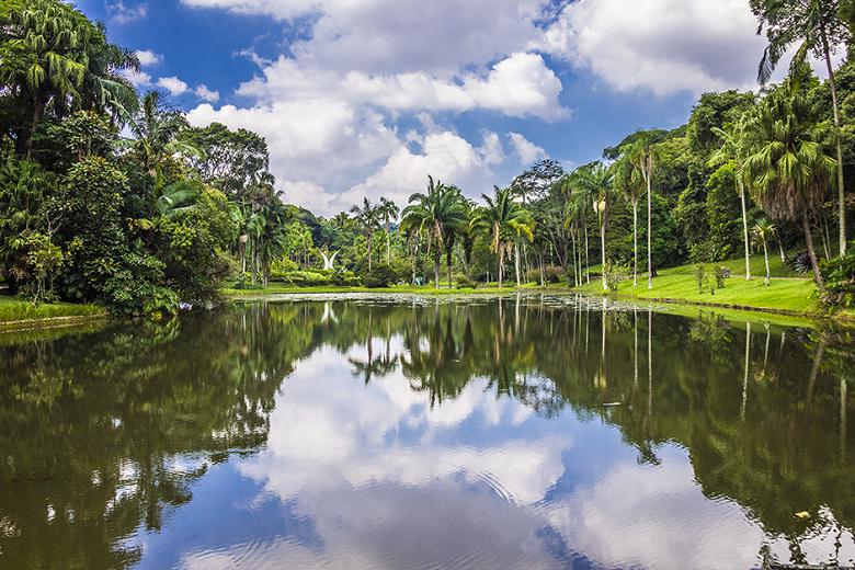 tudo sobre o Jardim Botânico de São Paulo