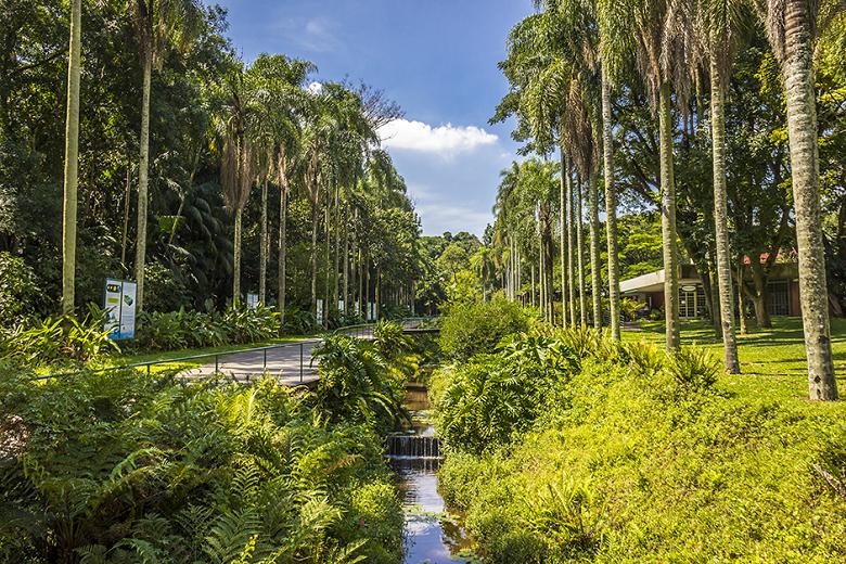 Jardim Botânico de São Paulo - fotos