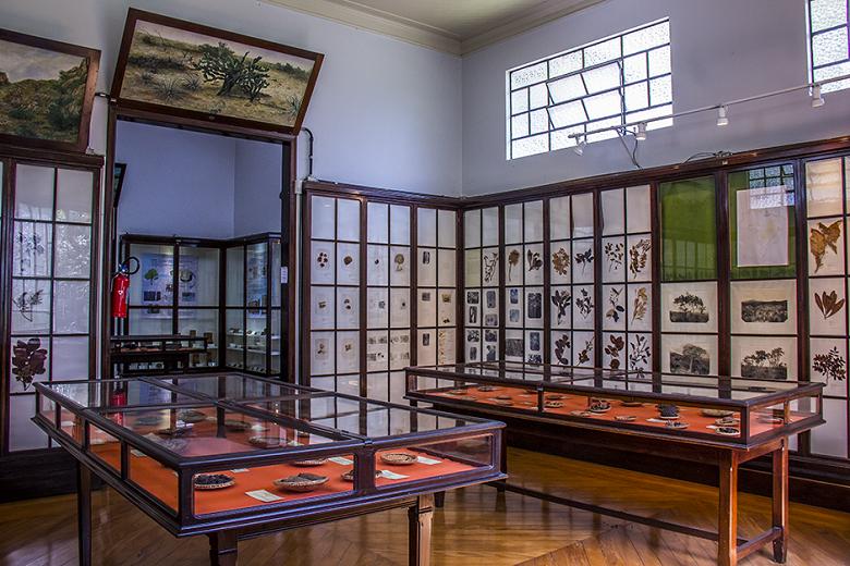 museu no Jardim Botânico de São Paulo
