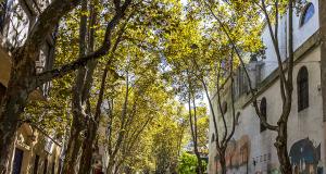 hostels em Montevidéu - dicas