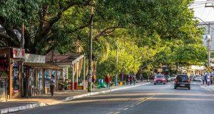 como se locomover com o transporte público em Florianópolis - dicas