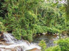 dicas de cachoeiras em Paraty