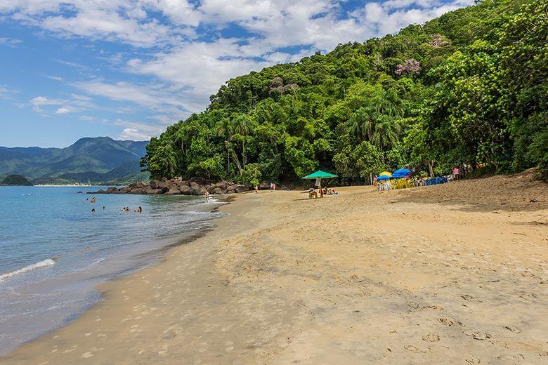 Trilha para a Praia do Bonete, em Ubatuba