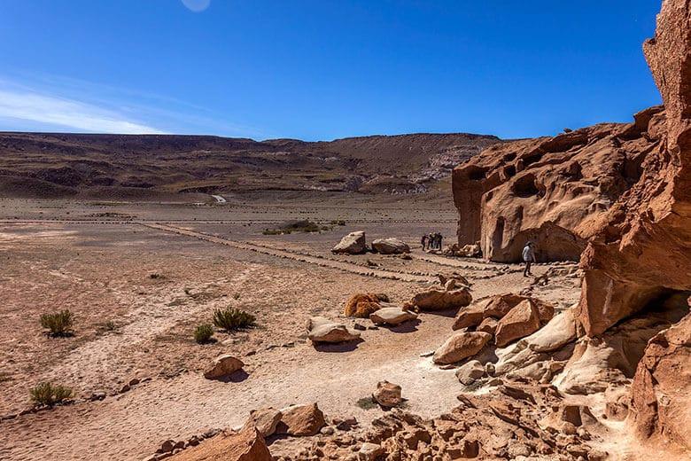 Hierbas Buenas no Deserto do Atacama