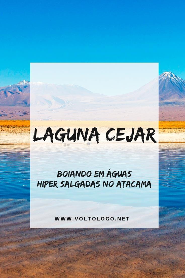 Passeio para a Laguna Cejar, no Deserto do Atacama: Descubra como funciona esse tour, qual a duração, quais lugares você irá conhecer e quanto custa.