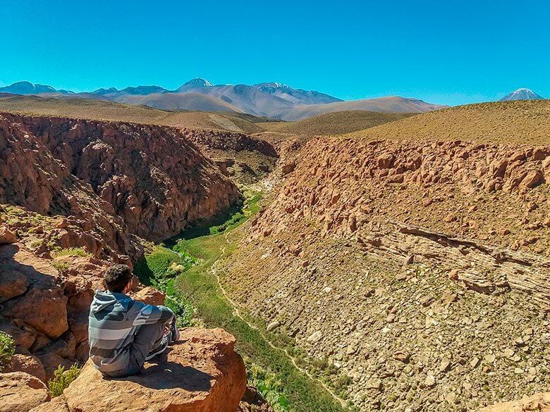 La Quebrada de los Cactus Atacama