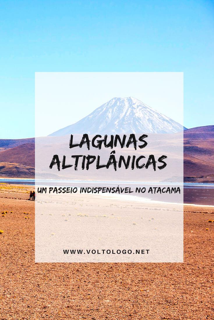 Passeio pelas Lagunas Altiplânicas e Piedras Rojas, no Deserto do Atacama (Chile): Descubra como é o tour mais famoso do deserto, o que você precisa saber para não se dar mal, e com qual agência fazer o passeio!