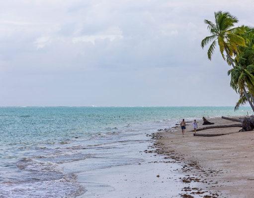 o que fazer em Maragogi - Alagoas