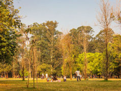 o que fazer no Parque Ibirapuera - São Paulo