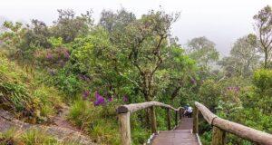 viagem a Monte Verde - dicas