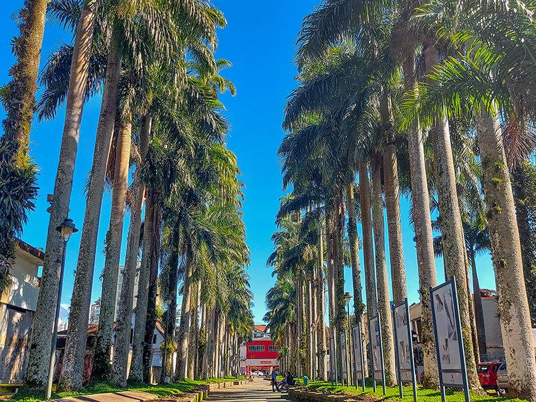 onde se hospedar em Joinville
